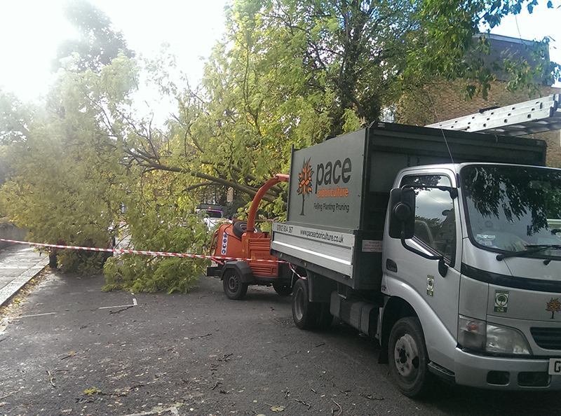 Pace Arboriculture Lorry